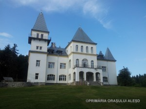 Castelul Poiana Florilor